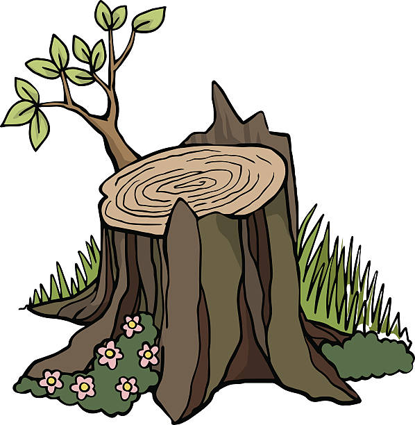 598x612 Stump Clipart Causes Global Warming Free Collection Download