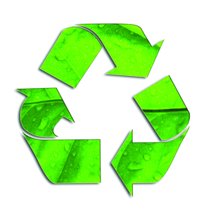 300x300 Free Go Green Clipart Free Images