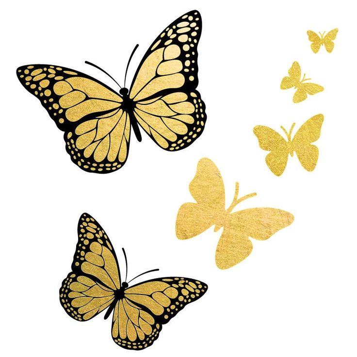 736x736 Inspiring Clipart Gold Butterfly Pencil And In Color Clip Art