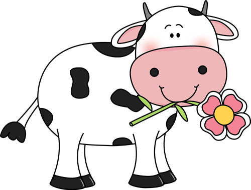 500x380 Cow With A Flower In Its Mouth