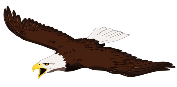 600x296 Eagle Transparent Png Clipart Tiere Transparent