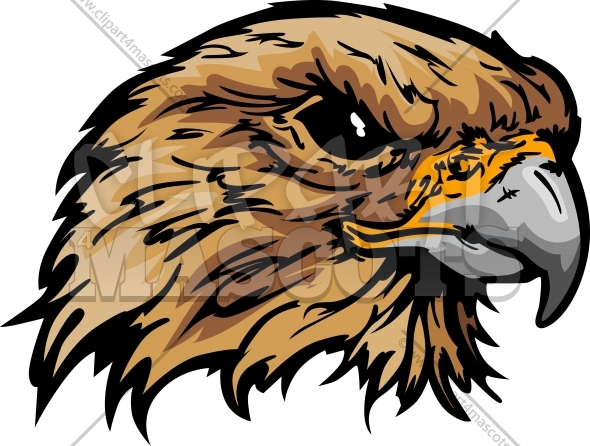 590x446 Falcon Clipart Graphic Vector Logo