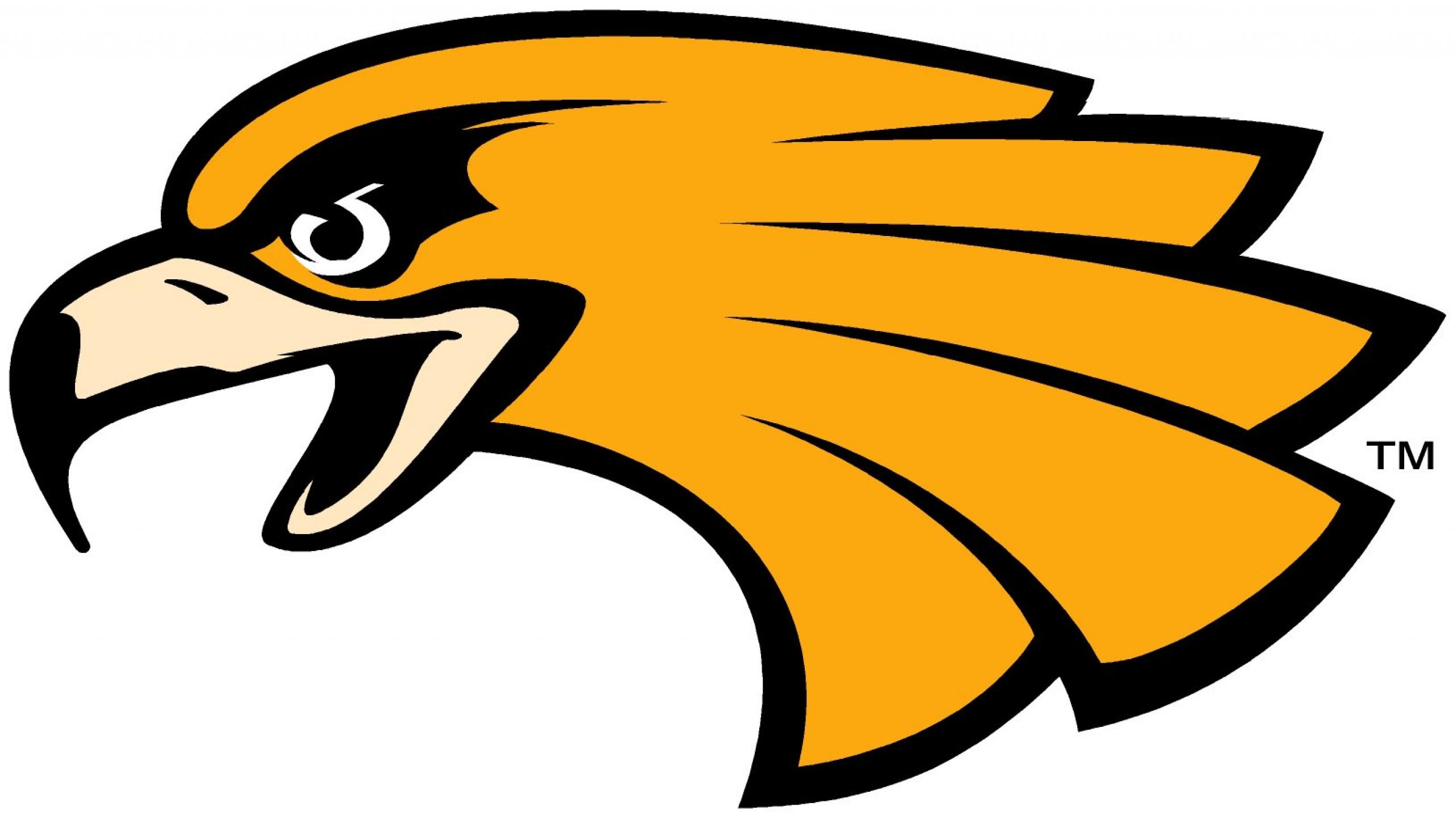 2560x1440 Wonderful Golden Eagle Cartoon A Flying Bald C