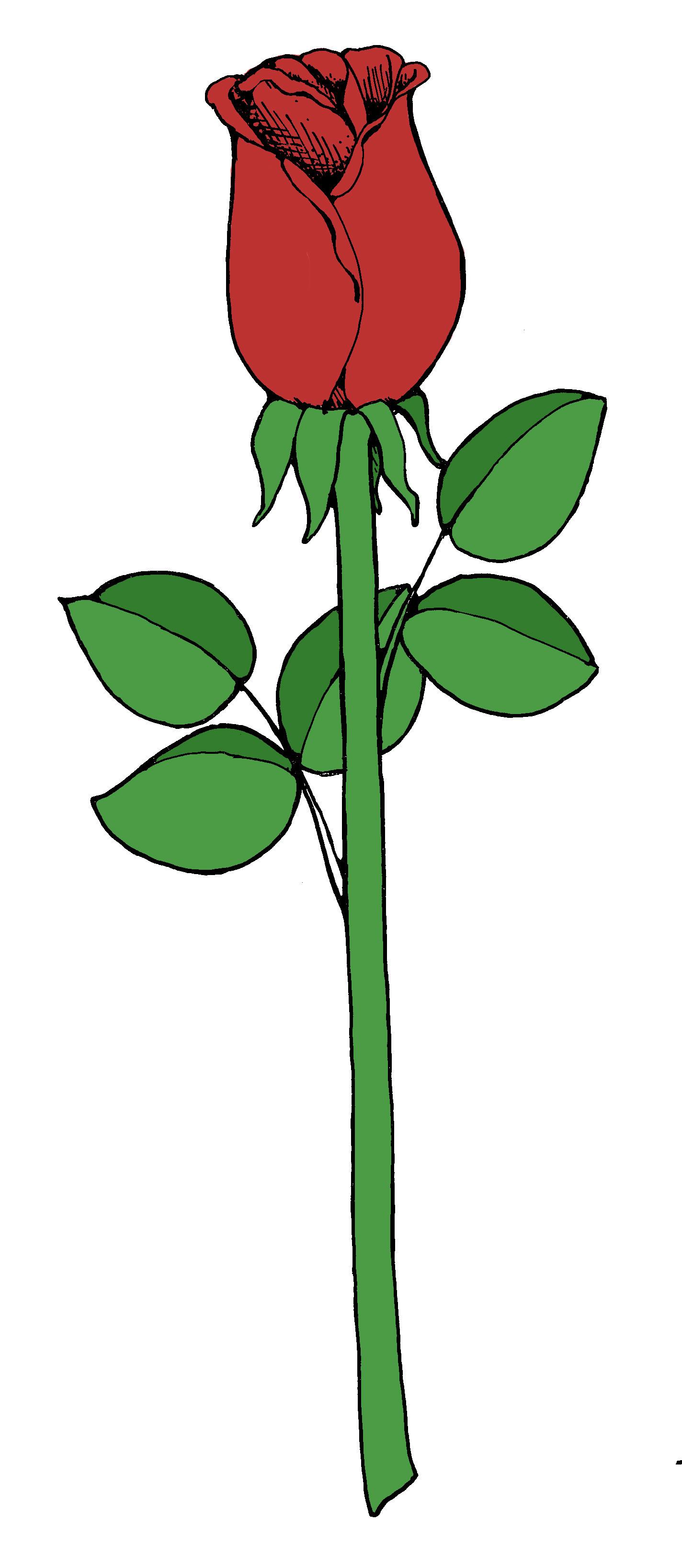 1424x3272 Simple Clipart Rose Amp Simple Clip Art Rose Images