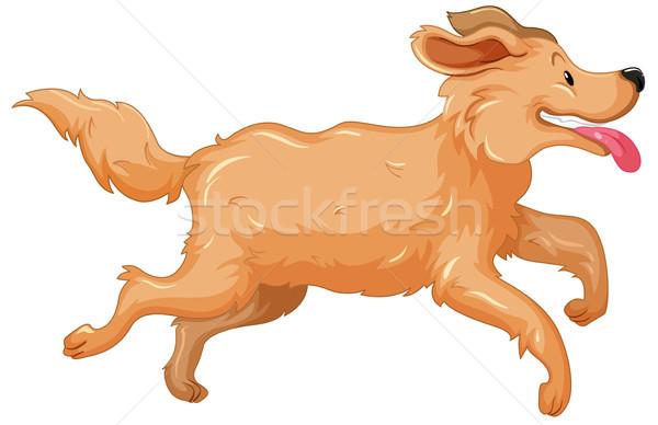 600x388 Golden Retriever Dog Running Vector Illustration Daniel Cole