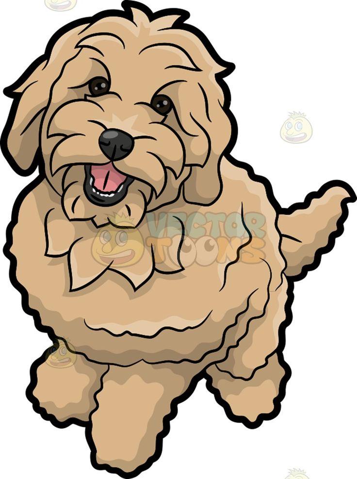 736x987 A Charming Golden Doodle Dog Golden Doodle Dog, Doodle Dog