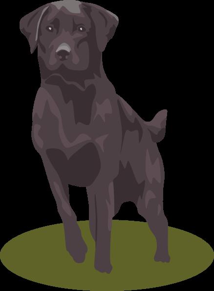 438x596 Lab Puppy Cliparts