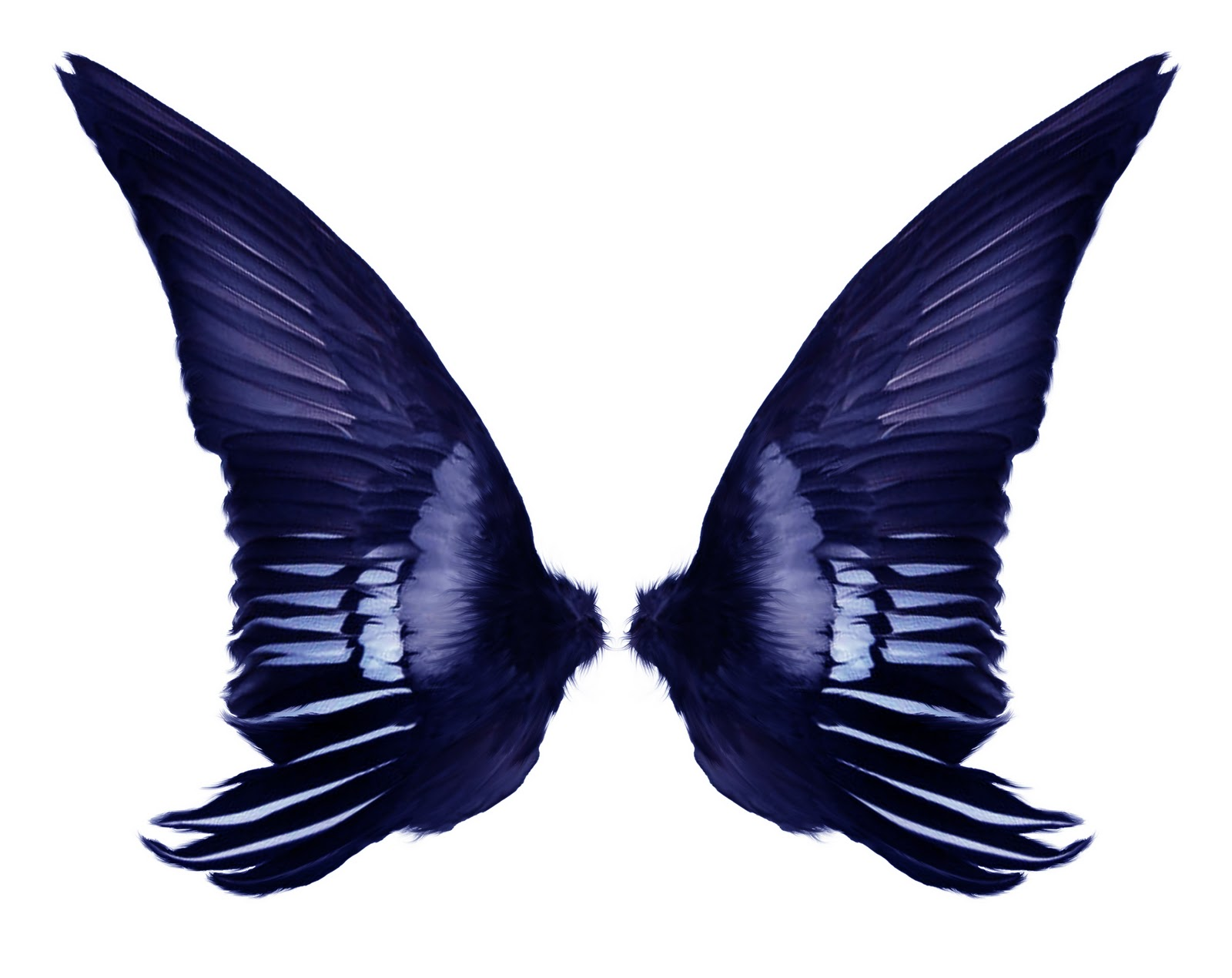 1600x1270 Fairy Wings Template Clipart Panda