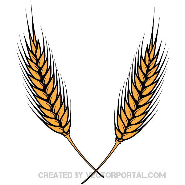 Grains Clipart