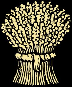 246x298 Grain Bushell Clip Art