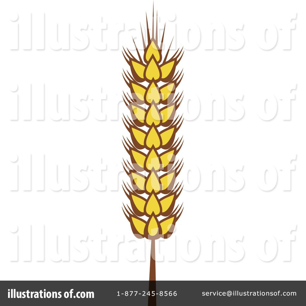 1024x1024 Wheat Clipart