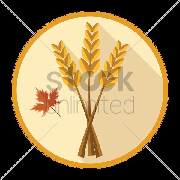 600x600 Wheat Grains Vector Image