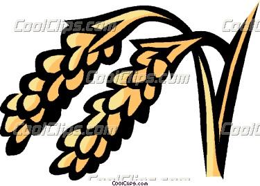 375x269 Rice Vector Clip Art Clipart Panda