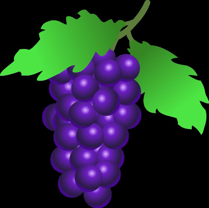 800x798 Grapes Clip Art Png Png Mart