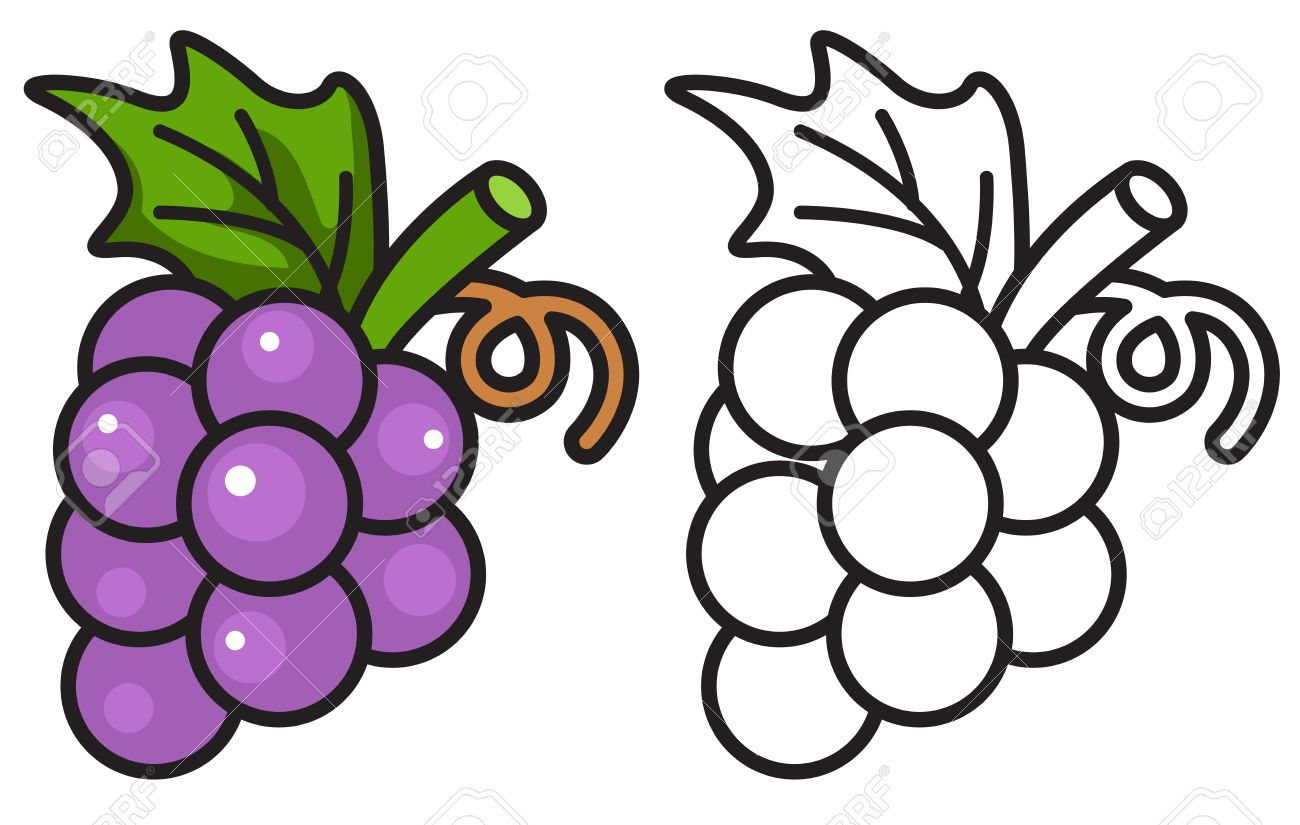 1300x825 Grapes Clipart Coloring