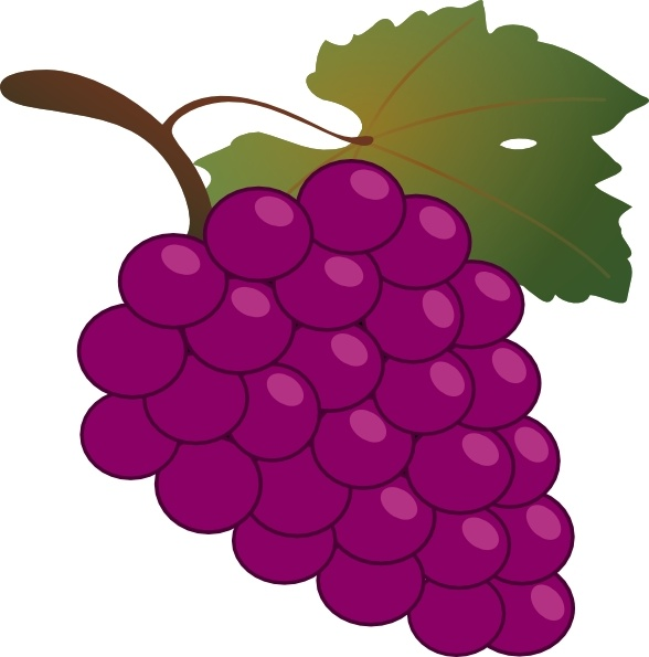 588x595 Grapes Clipart Grape Clip Art Free Vector In Open Office Drawing