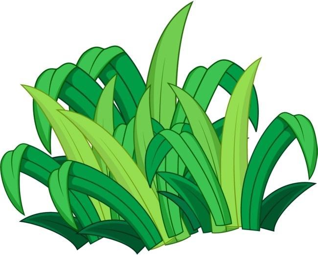 650x522 Green Grass Clip Art Cartoon Green Grass Cartoon Green Butterfly