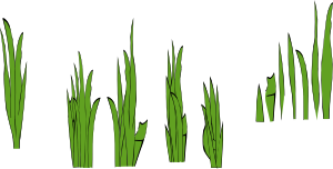 300x152 Grass Blades And Clumps Clip Art Free Vector 4vector