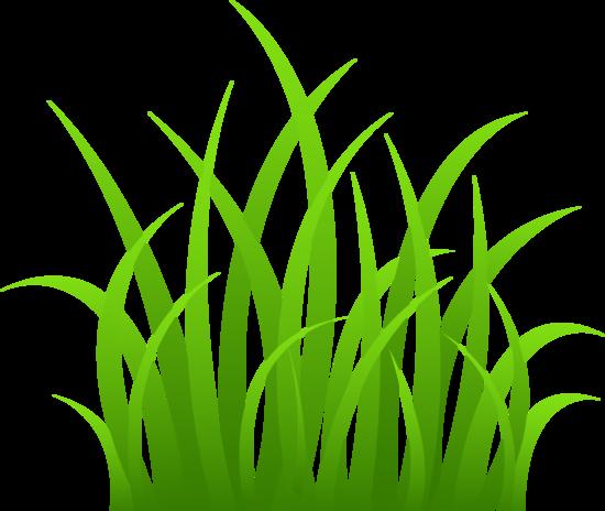 550x464 Grass Clip Art Grass On Transparent Background Diy