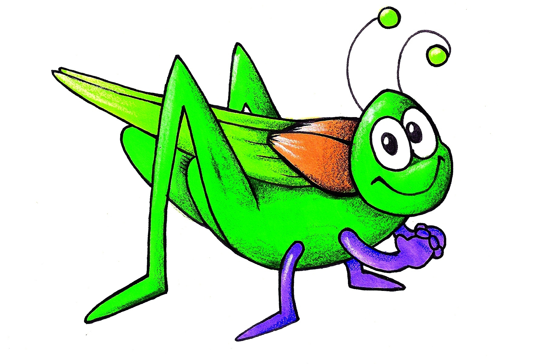 1800x1200 Grasshopper Cliparts Free Download Clip Art