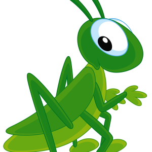 300x300 Grasshopper Png Images Free Download