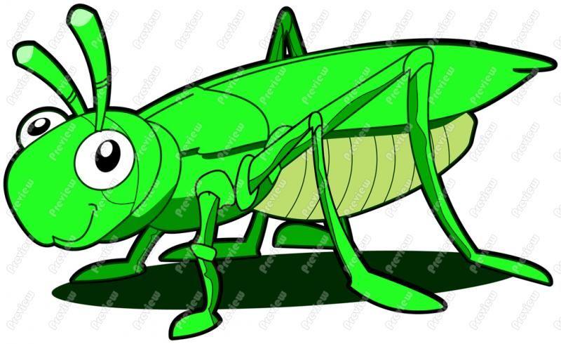 800x490 Free Clip Artgrasshoppers Grasshopper Clipart Item 3 Gypsy1