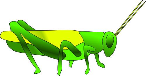 500x261 Grasshopper Clip Art Clipart Panda