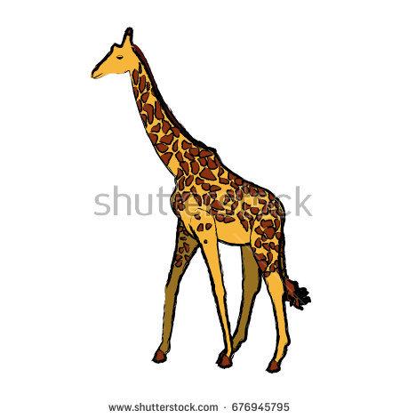 450x470 Herbivorous Clipart Grassland Animal