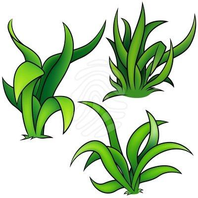 400x400 Sea Grass Clipart Habitat 3885757