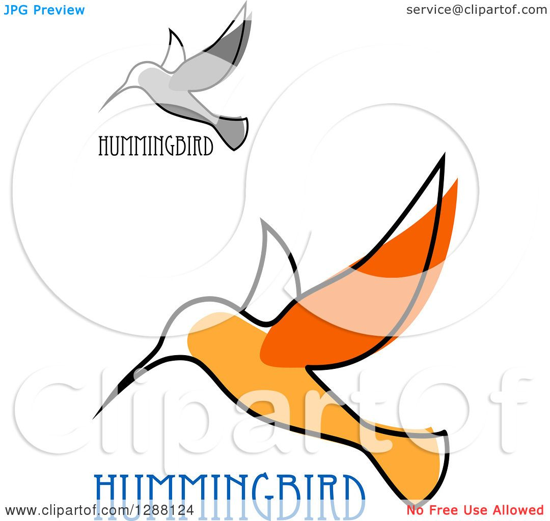 1080x1024 Clipart Of Sketched Grayscale And Orange Hummingbirds With Text