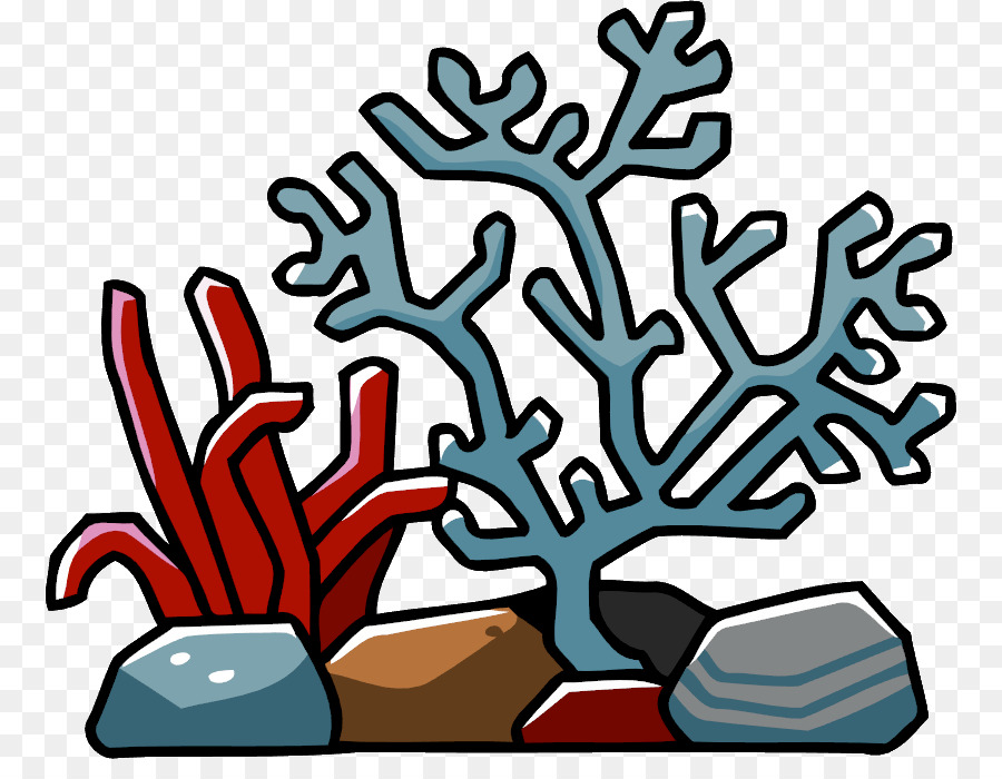 900x700 Coral Triangle Coral Reef Clip Art