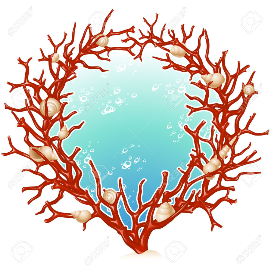 900x900 Red Coral Picture Frames Clip Art