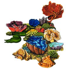 236x236 This Coral Reef Clipart Is Perfect For Your Task Browse Other