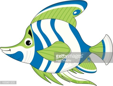 474x361 Tropical Fish