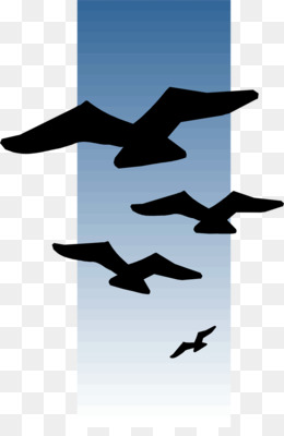 260x400 Great Blue Heron Line Art Bird Clip Art