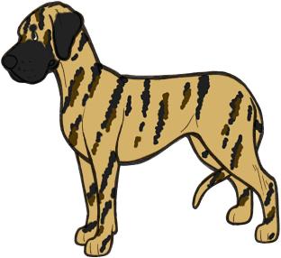 312x286 Dog Coat Colour Genetics