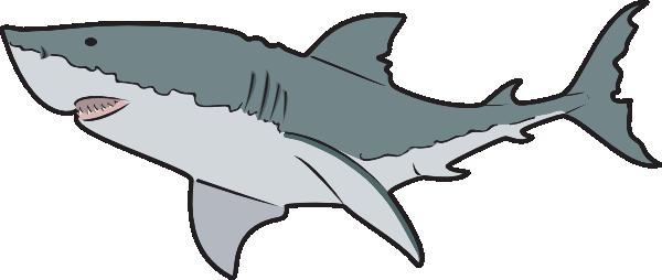600x254 Ocean Animals Animal, En, Fish, Ocean, Ocean Animals Glogster