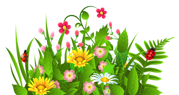 600x318 Cute Grass And Flowers Png Clipart Grasses