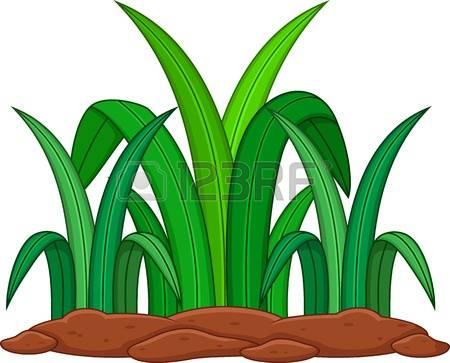 450x363 Dry Grass Clipart Green Grass