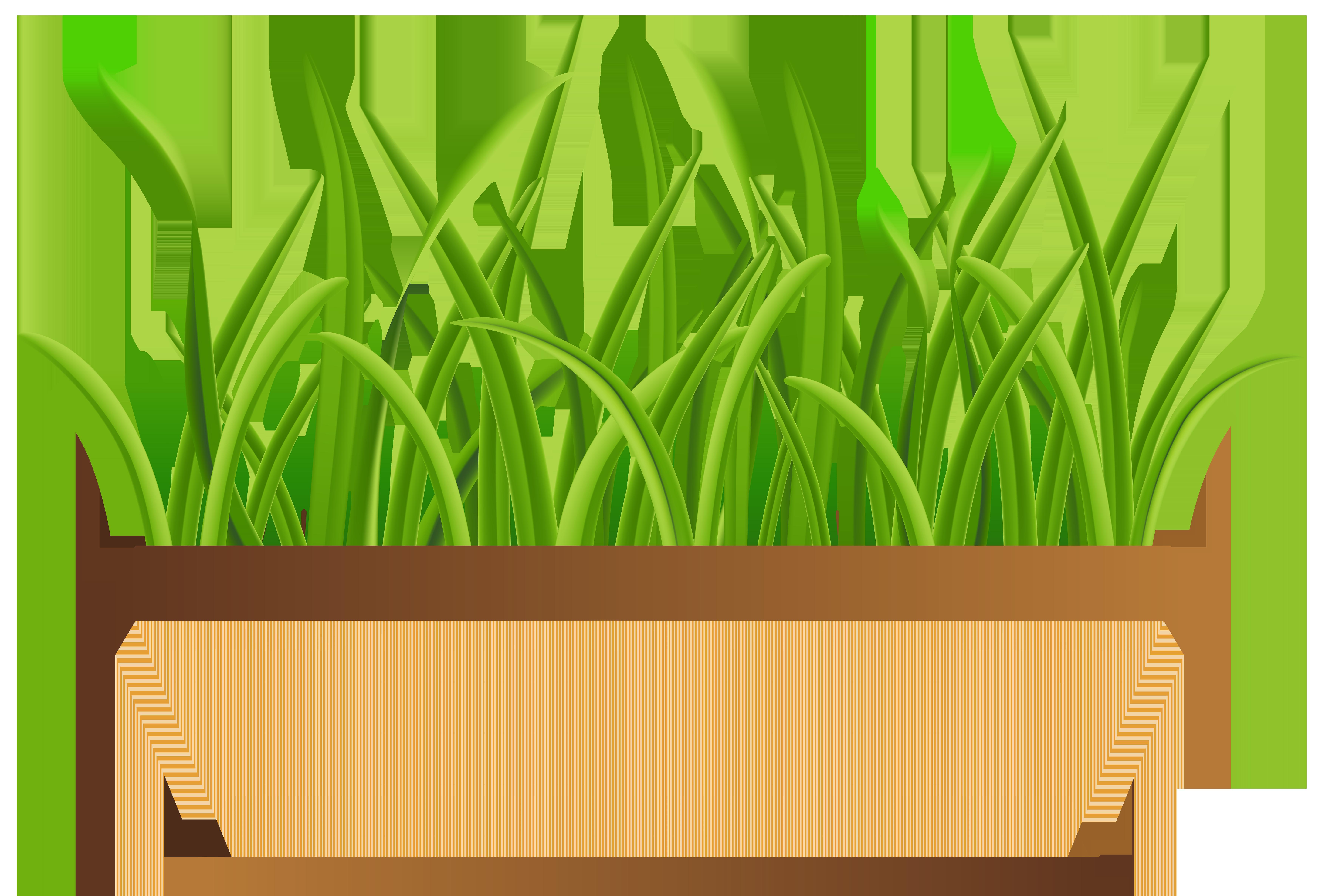 7000x4747 Flowerpot With Grass Transparent Png Clip Art Imageu200b Gallery