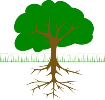 351x336 Tree And Grass Clipart