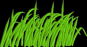 300x164 Green Grass Clip Art Green Grass Blade Clip Art