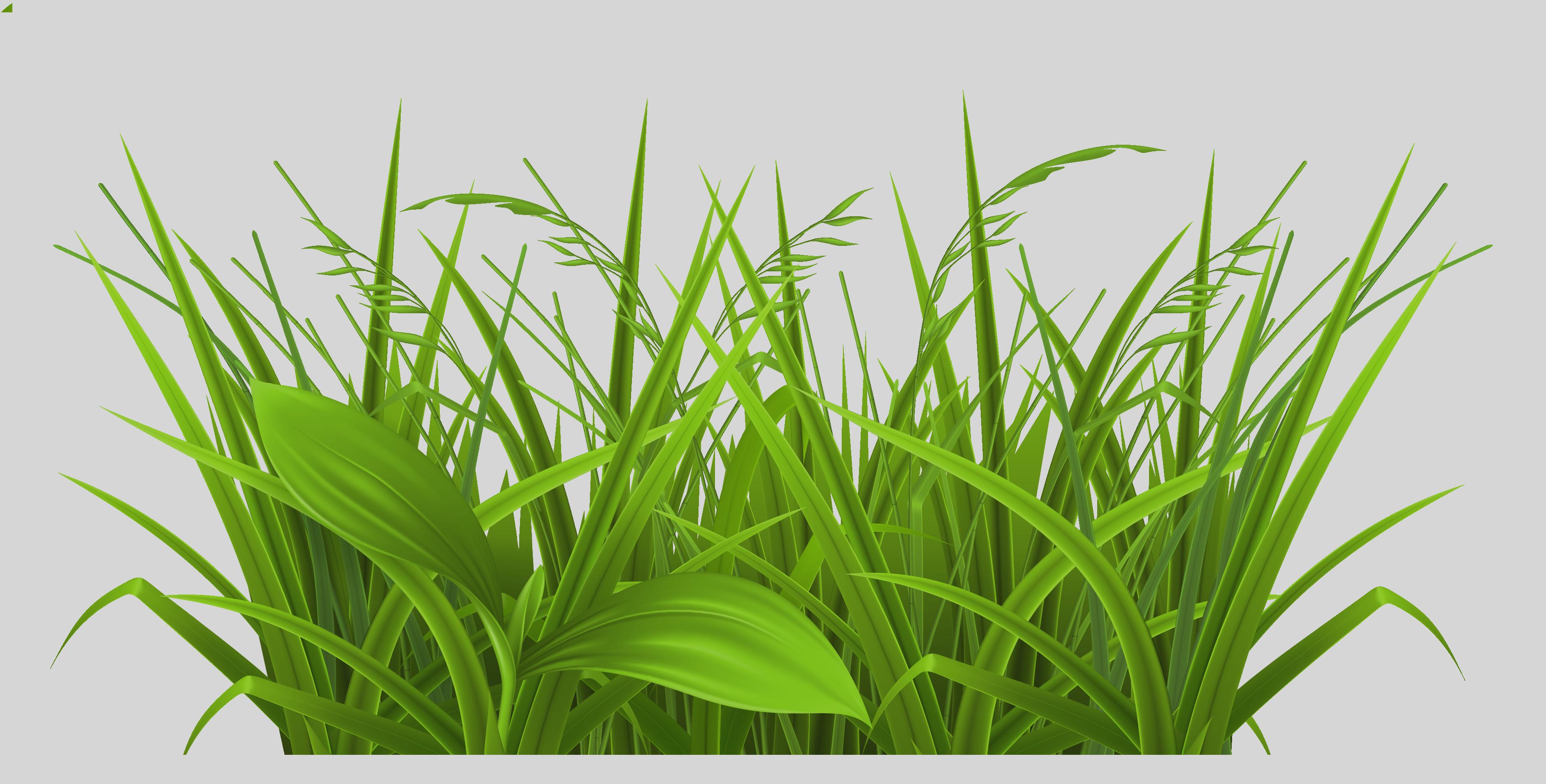 3758x1907 Clip Art Grass Clipart Free Clip Art Images 0wfxnuq