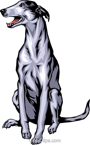 299x480 Greyhound Royalty Free Vector Clip Art Illustration Anim0341