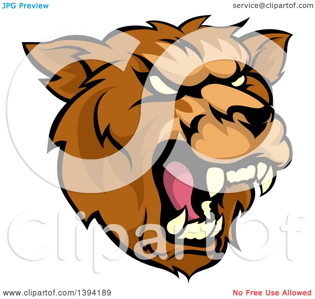 1080x1024 Clipart Of A Cartoon Roaring Grizzly Bear Mascot Head