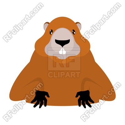 400x400 Groundhog Isolated On White Background Royalty Free Vector Clip