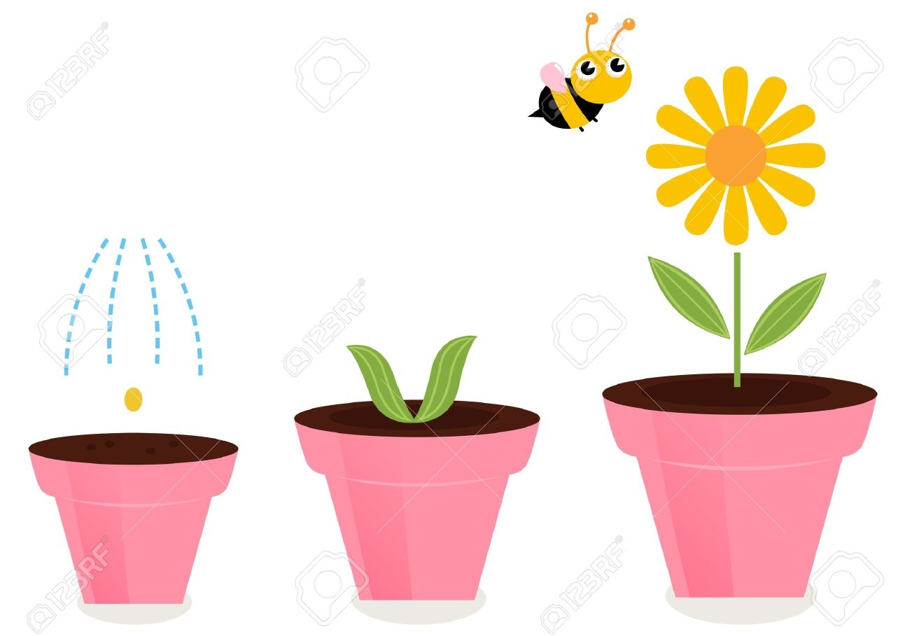 1300x909 Collection Of Flower Growing Clipart High Quality, Free