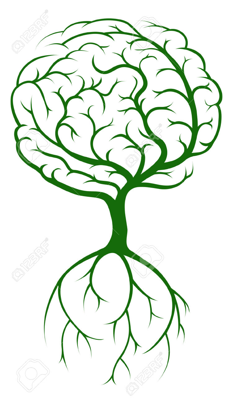 751x1300 Brain Growing Clipart