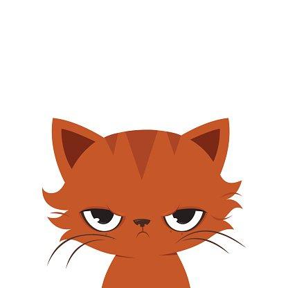 416x416 Angry Cat Cute Grumpy Cat Premium Clipart