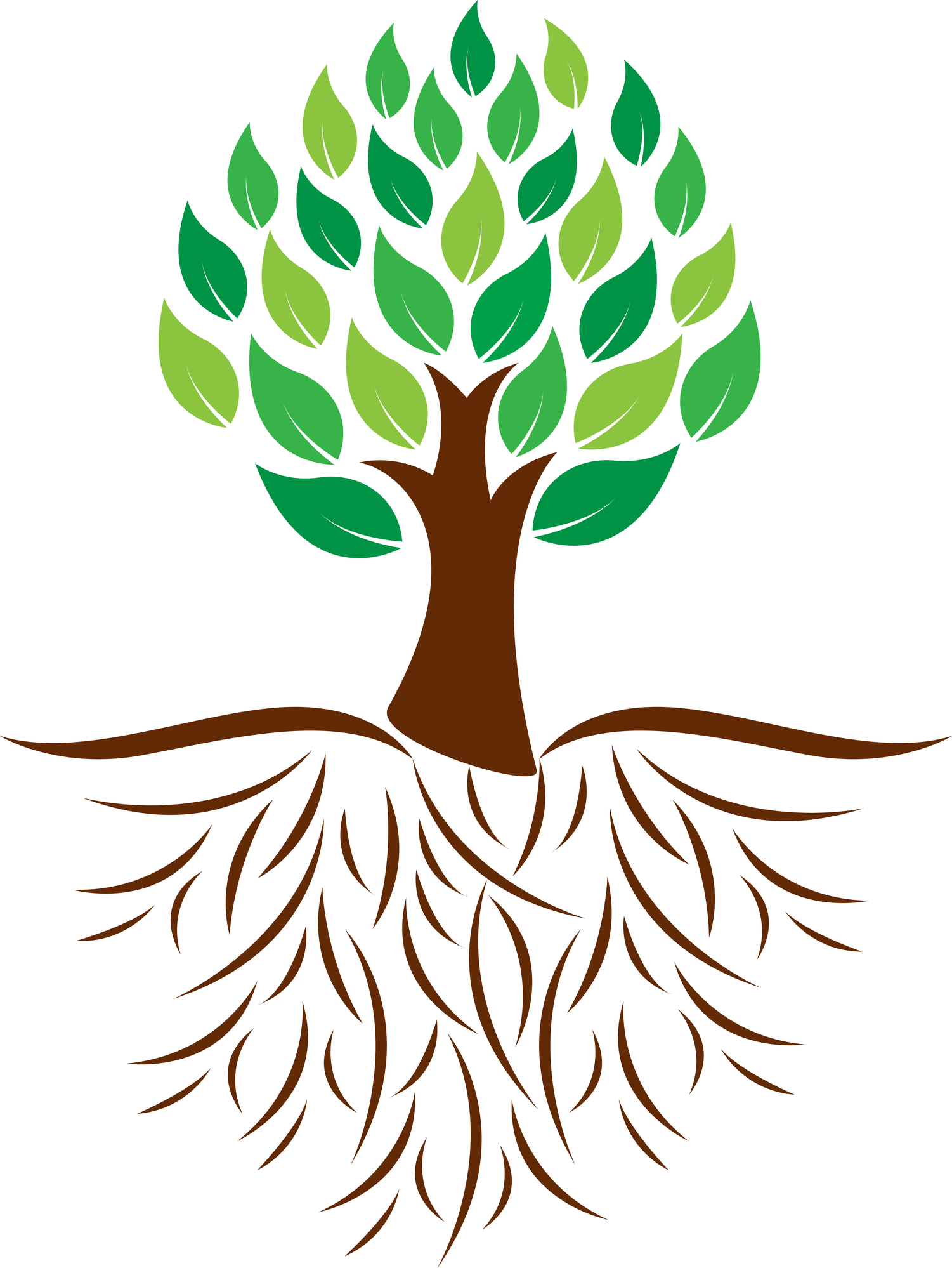 1501x1998 The Roots Of Trees Clipart